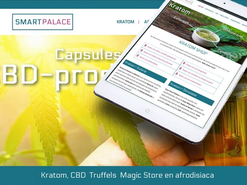website-smartpalace